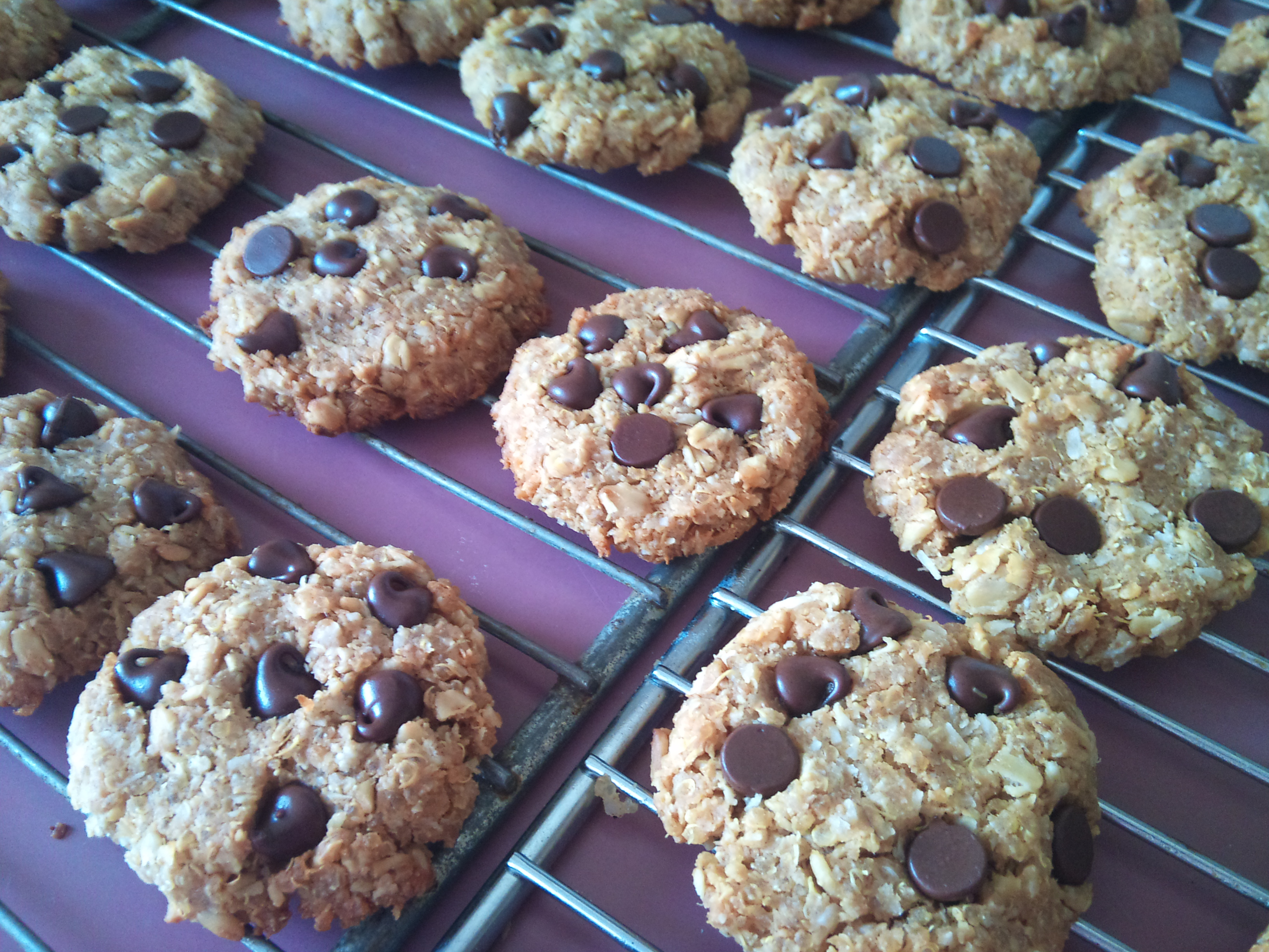 Quinoa peanut butter chocolate chip cookies | DINUTRITION